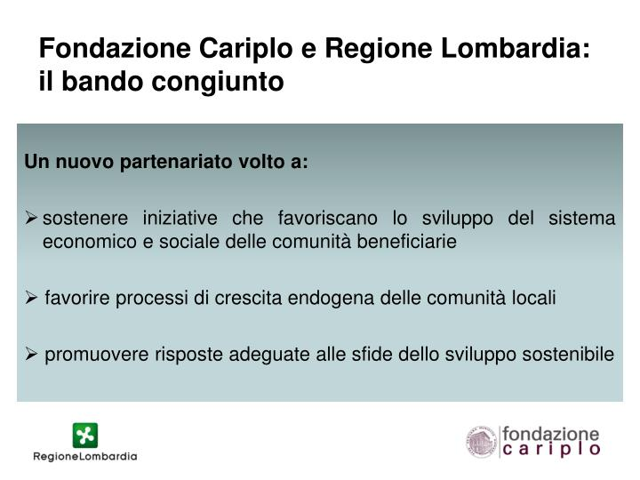 Fondazione Cariplo e Regione Lombardia: il bando congiunto