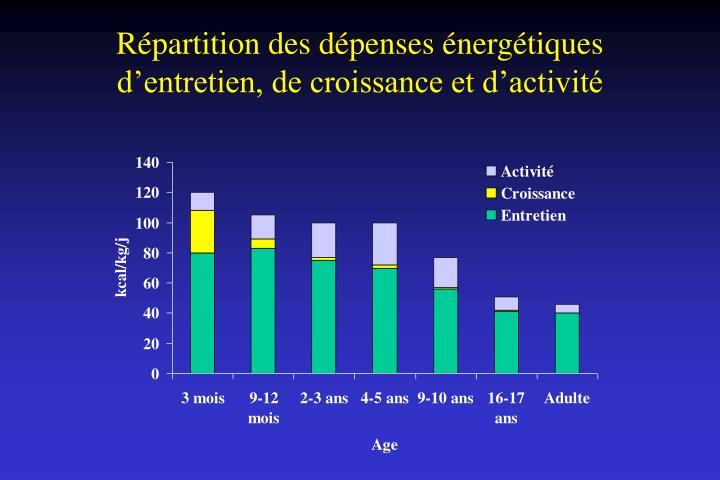 Répartition des dépenses énergétiques d'entretien, de croissance et d'activité