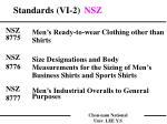 standards vi 2 nsz