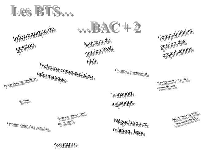 Les BTS
