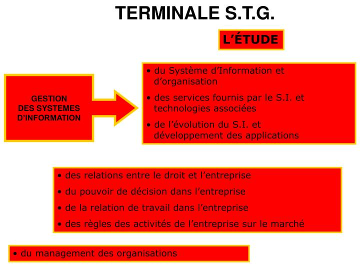 TERMINALE S.T.G.