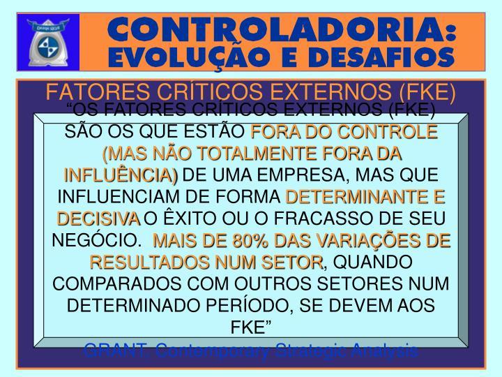 FATORES CRÍTICOS EXTERNOS (FKE)