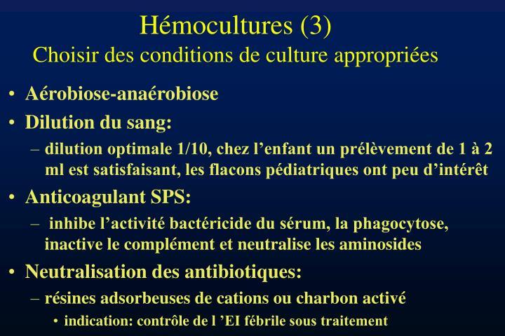 Hémocultures (3)