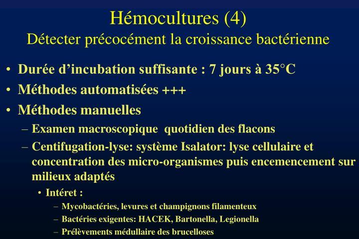 Hémocultures (4)