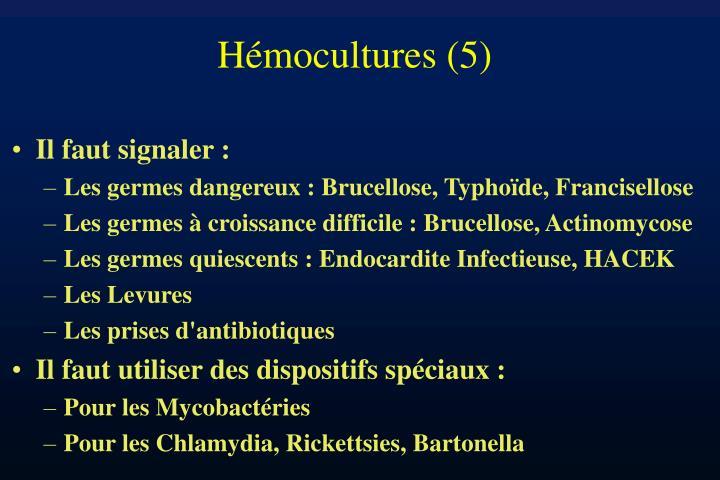 Hémocultures (5)