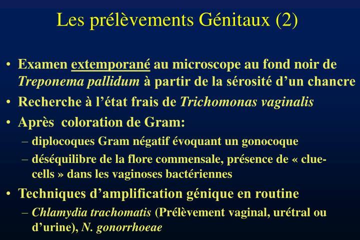 Les prélèvements Génitaux (2)