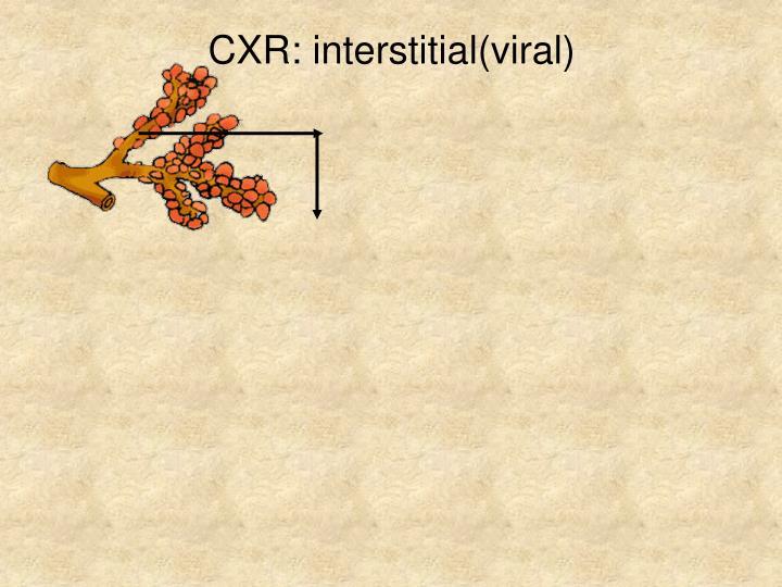 CXR: interstitial(viral)