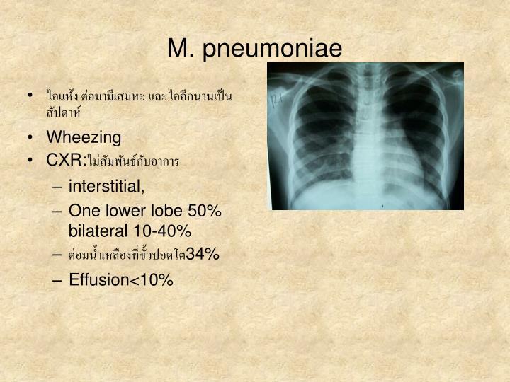 M. pneumoniae