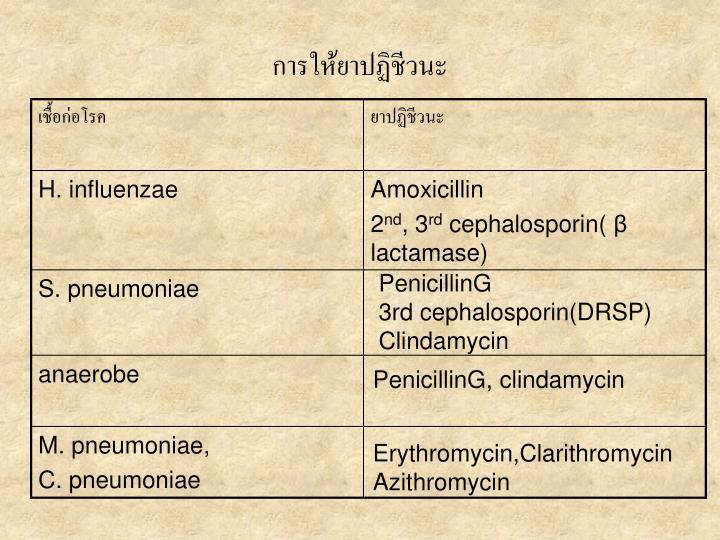 การให้ยาปฏิชีวนะ