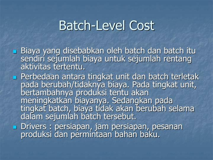 Batch-Level Cost