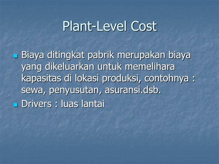 Plant-Level Cost