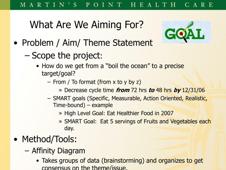 Problem / Aim/ Theme Statement