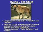 hyena the chief