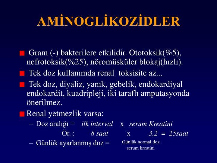 AMİNOGLİKOZİDLER
