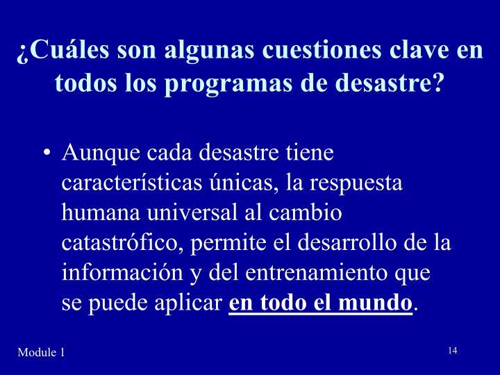 ¿Cuáles son algunas cuestiones clave en todos los programas de desastre?