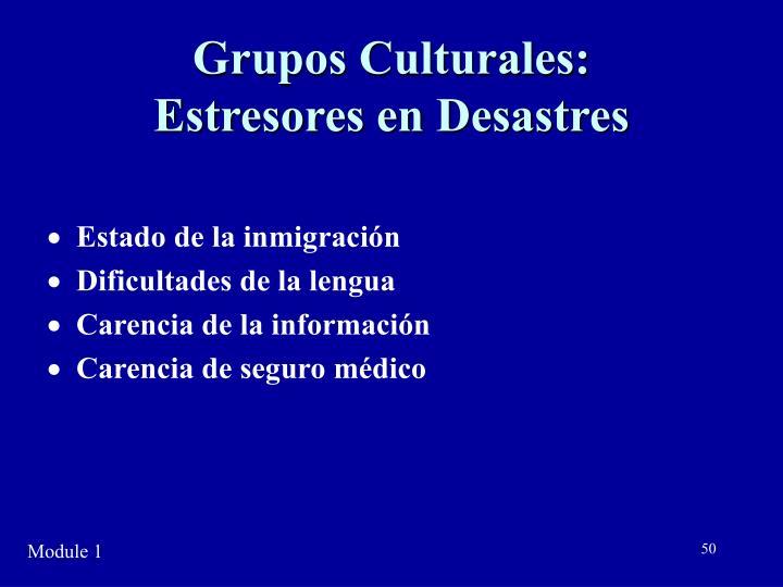 Grupos Culturales: