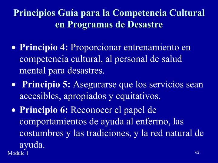 Principios Guía para la Competencia Cultural