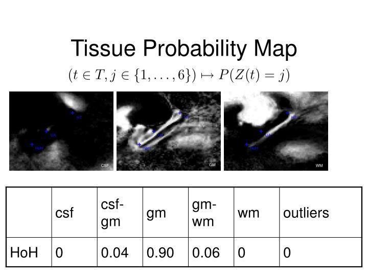 Tissue Probability Map