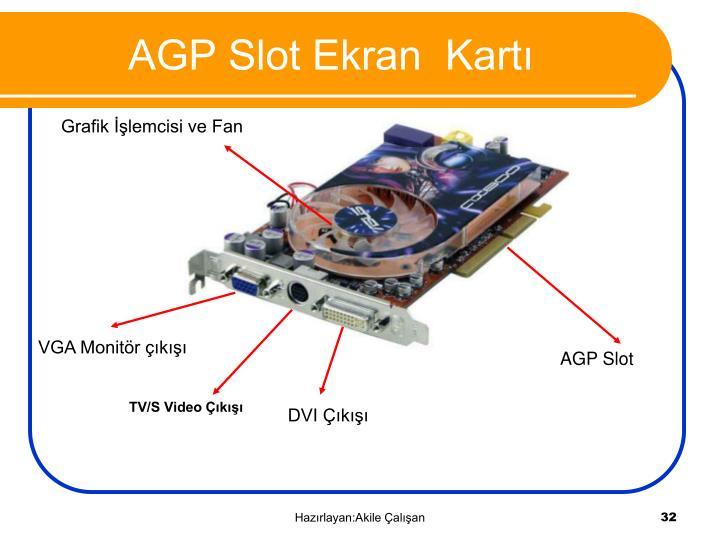 AGP Slot Ekran  Kartı