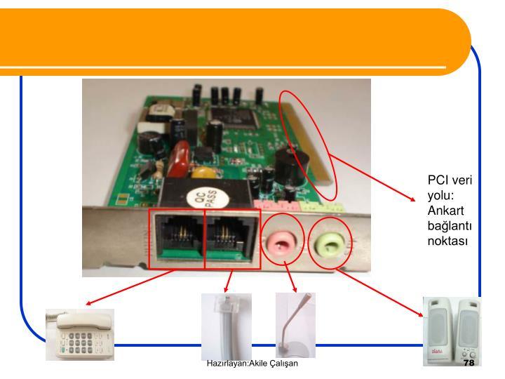 PCI veri yolu: