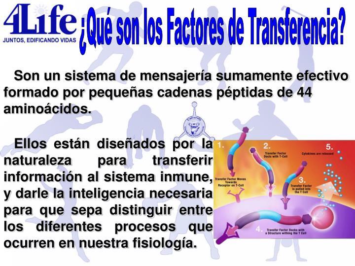 ¿Qué son los Factores de Transferencia?