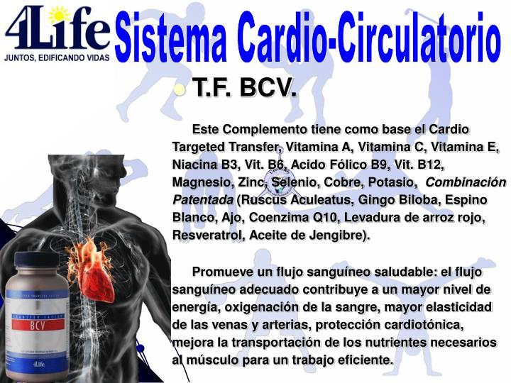 Sistema Cardio-Circulatorio