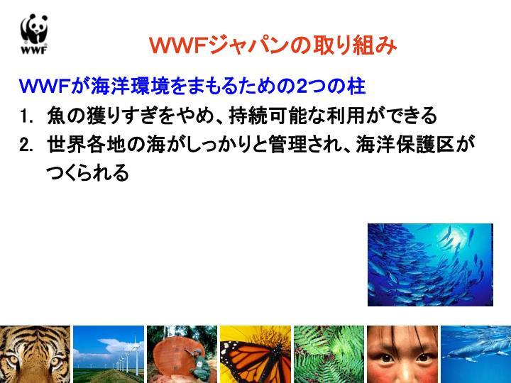 WWFジャパンの取り組み