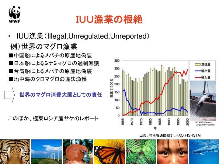 IUU漁業の根絶