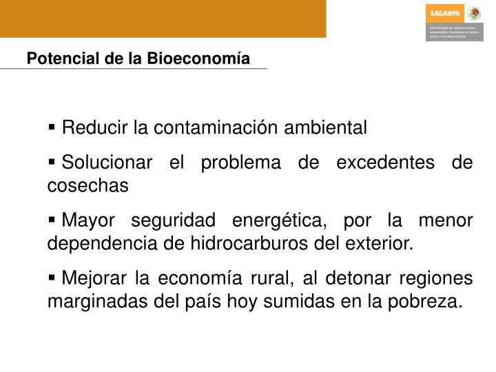 Potencial de la Bioeconomía