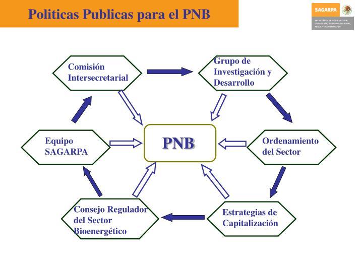 Politicas Publicas para el PNB