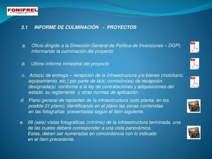 3.1     INFORME DE CULMINACIÓN   -  PROYECTOS