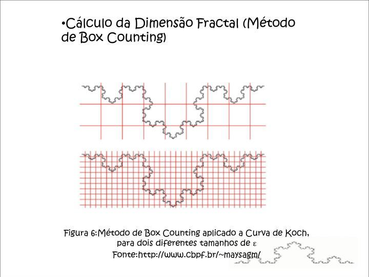 Cálculo da Dimensão Fractal (Método de Box Counting)