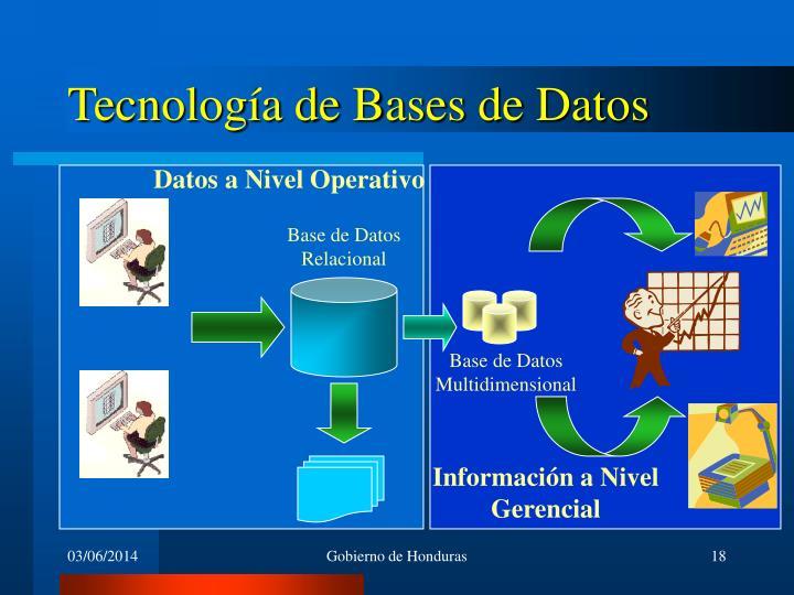 Datos a Nivel Operativo