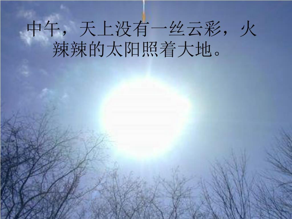 中午,天上没有一丝云彩,火辣辣的太阳照着大地。