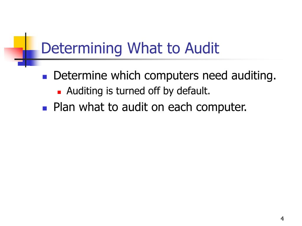 Determining What to Audit