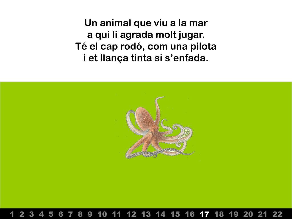 Un animal que viu a la mar