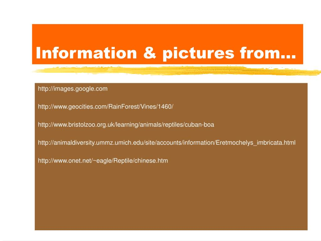 Information & pictures from...