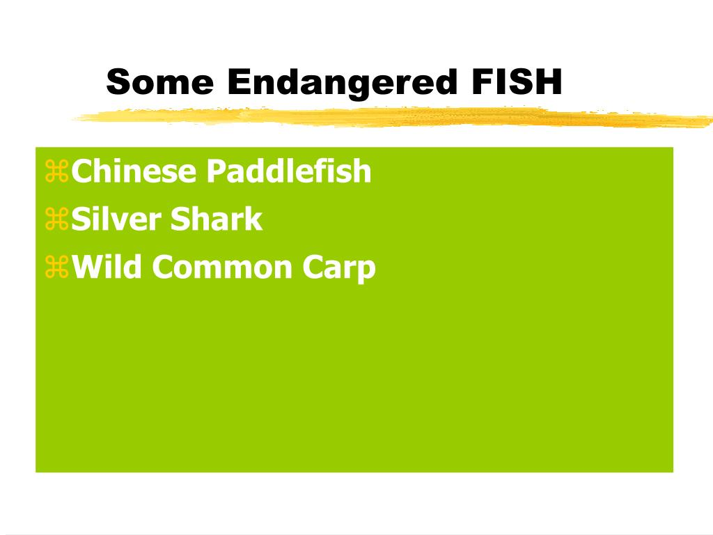 Some Endangered FISH