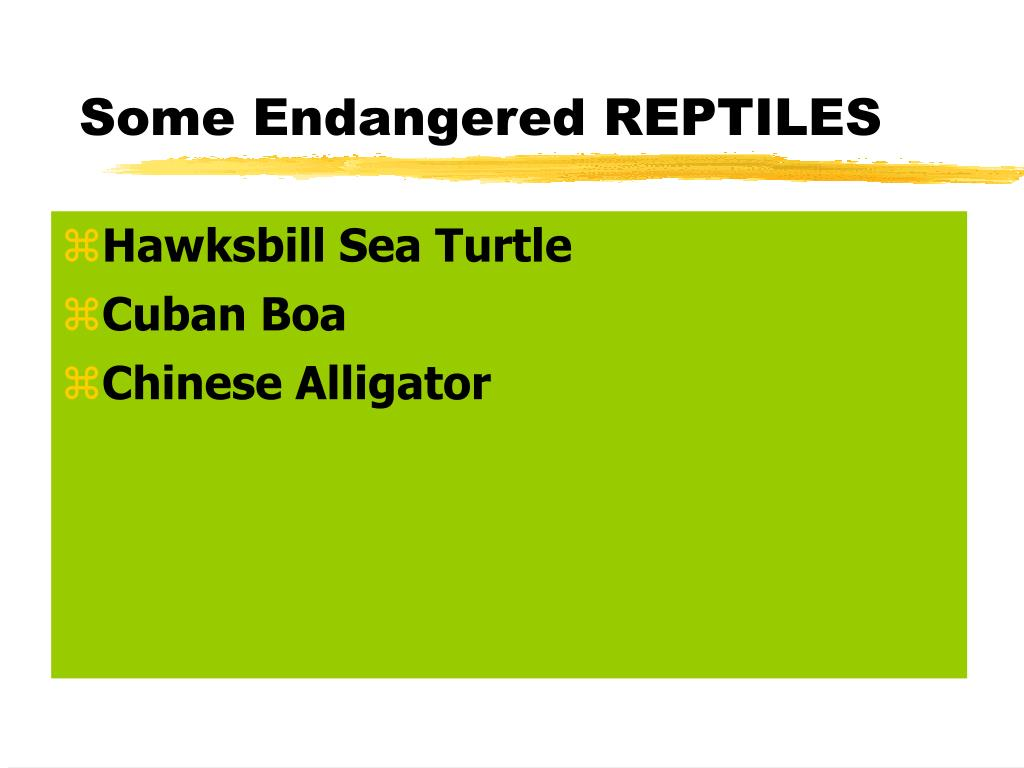 Some Endangered REPTILES