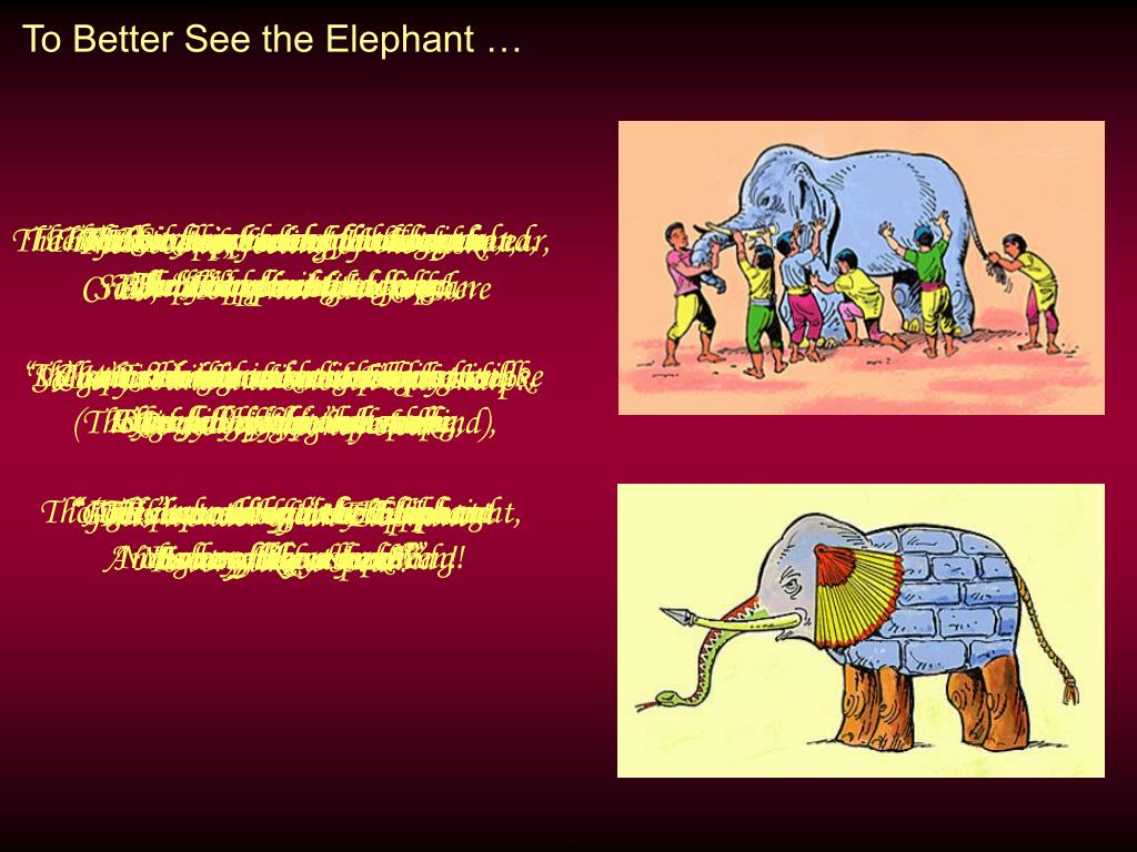 To Better See the Elephant …
