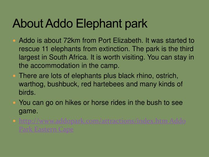 About addo elephant park l.jpg