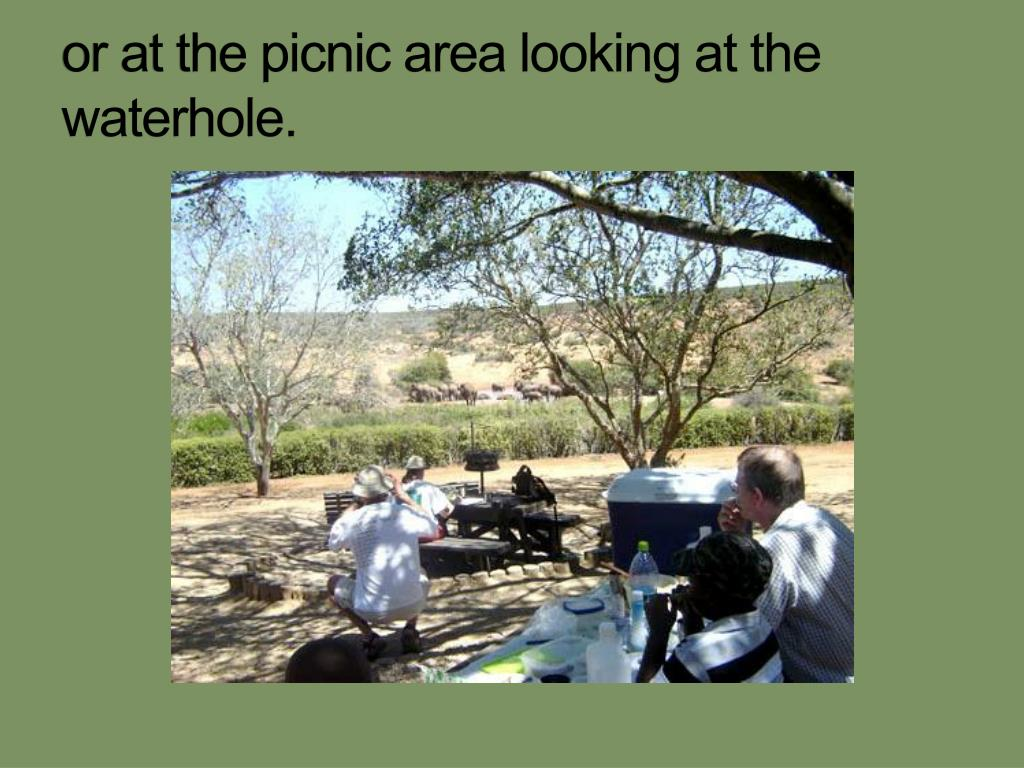 or at the picnic area looking at the waterhole.