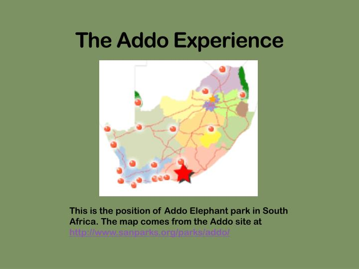 The addo experience l.jpg