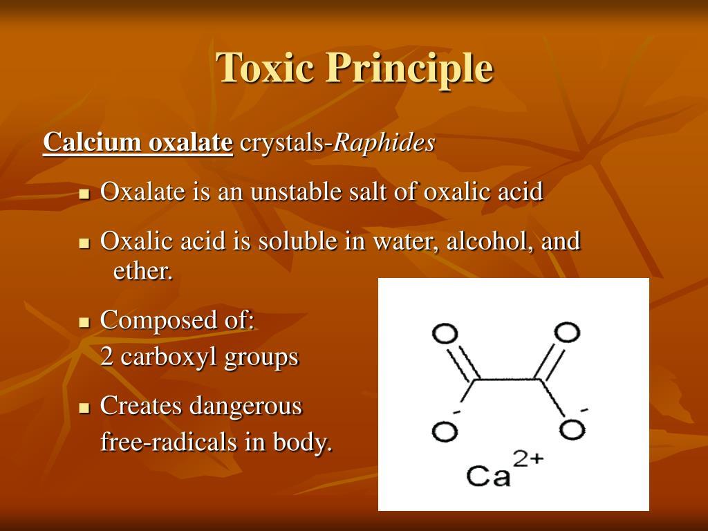 Toxic Principle