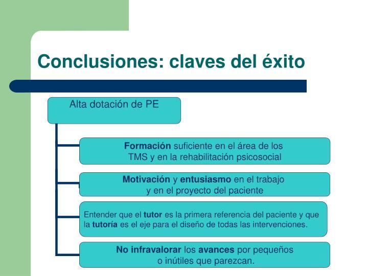 Conclusiones: claves del éxito