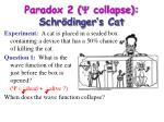 paradox 2 y collapse schr dinger s cat