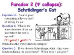 paradox 2 y collapse schr dinger s cat14