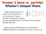 paradox 3 wave vs particle wheeler s delayed choice17