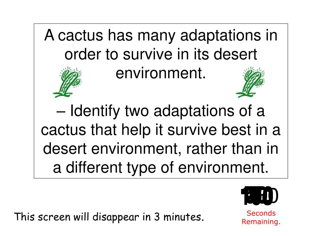 A cactus has many adaptations in order to survive in its desert environment.