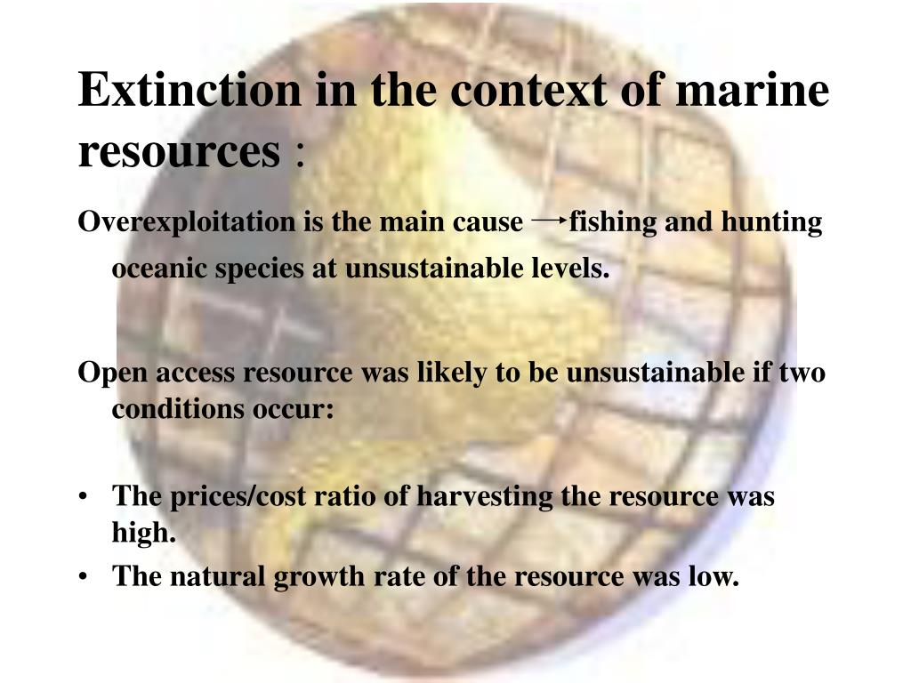 Extinction in the context of marine resources